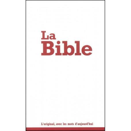 Bible seg21 d evangelisation broche
